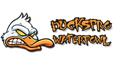 Ducks Pro Waterfowl